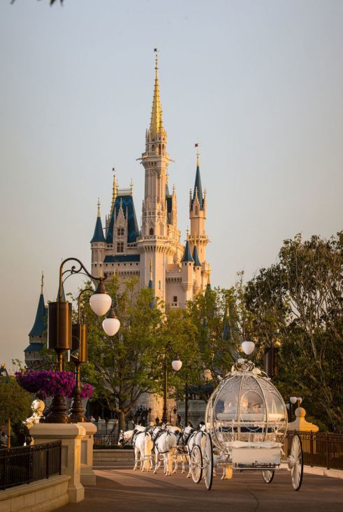 gallery-1462217708-gallery-1462119650-disneyfantasyweddings3